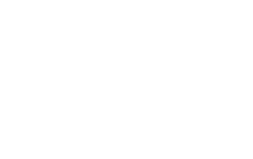 20 Years of Global Experience