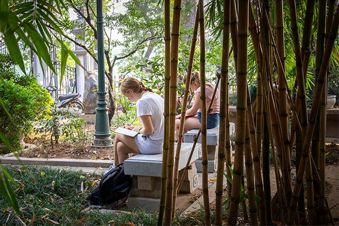 Students studying under the bamboo